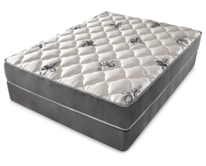 doctors choice plush mattress denver mattress reviews