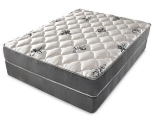 doctors choice plush mattress denver mattress reviews