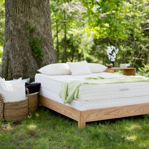 savvy rest serenity mattress
