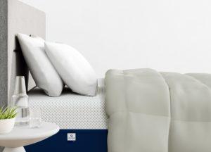 Amerisleep Comforter